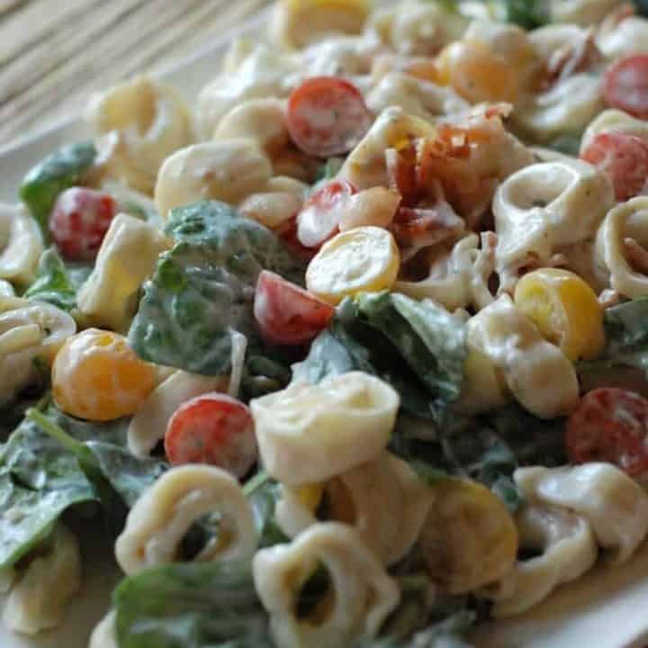 BLT tortellini salad comes together so easily! It's made with a simple Greek yogurt dressing and has lots of fresh tomatoes! www.lemonsforlulu.com