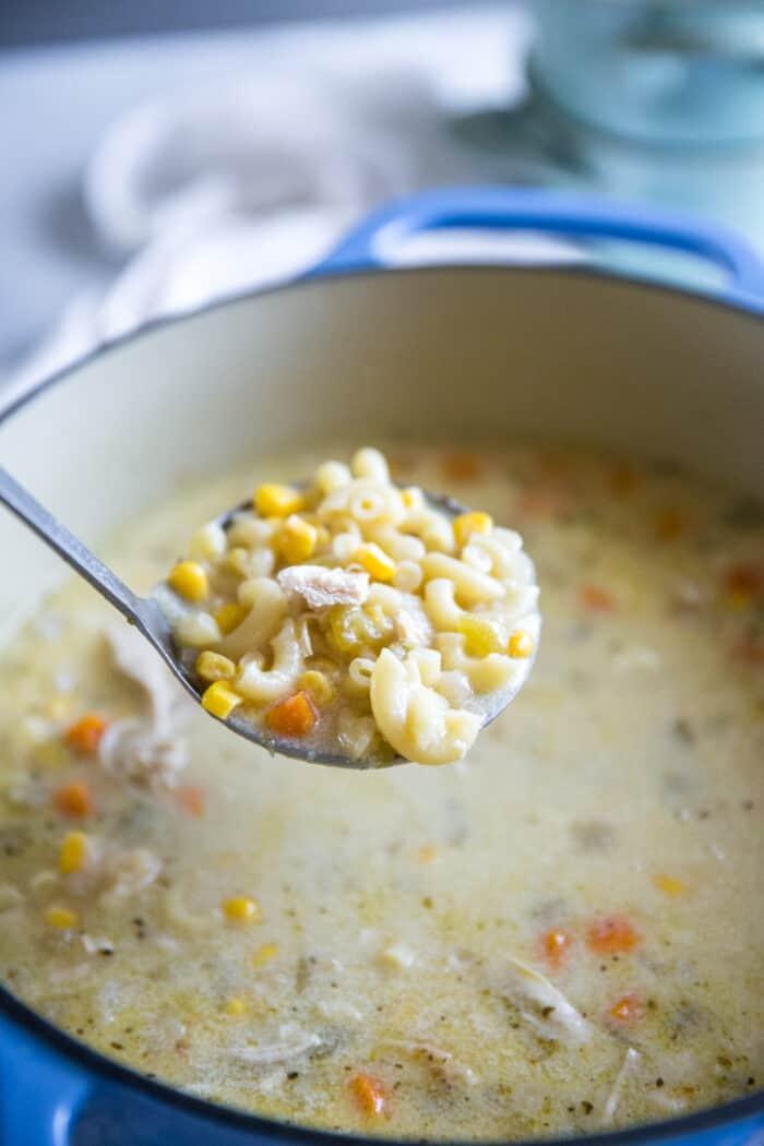 ladle of chicken stew