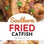 fried catfish collage image