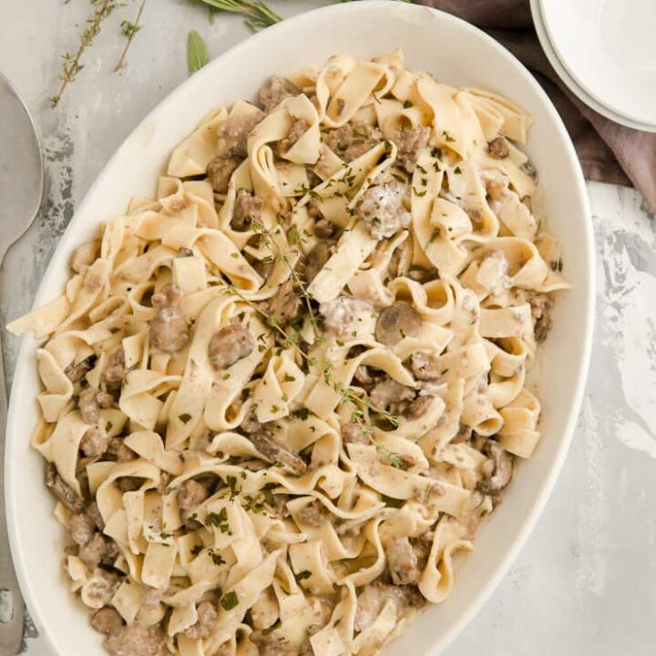 whole plate of beef stroganoff